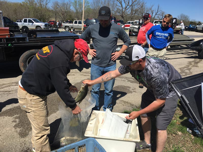 HBA Spring Fishing Tournament 2018