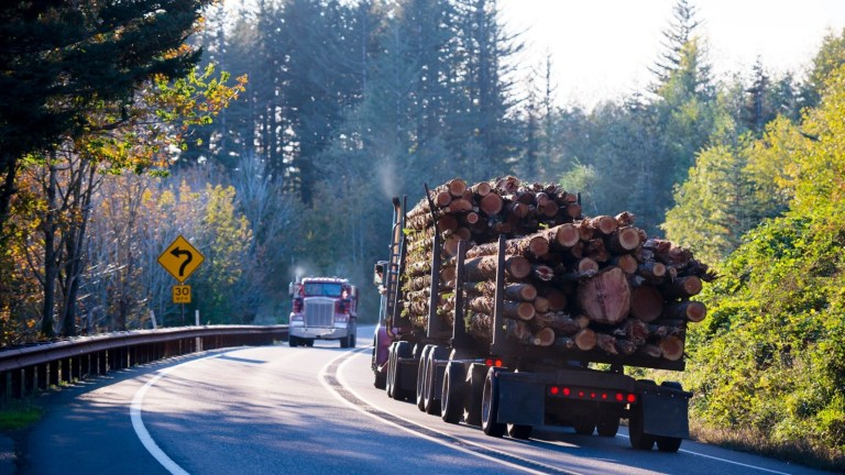 Commerce Department Cuts Lumber Tariffs